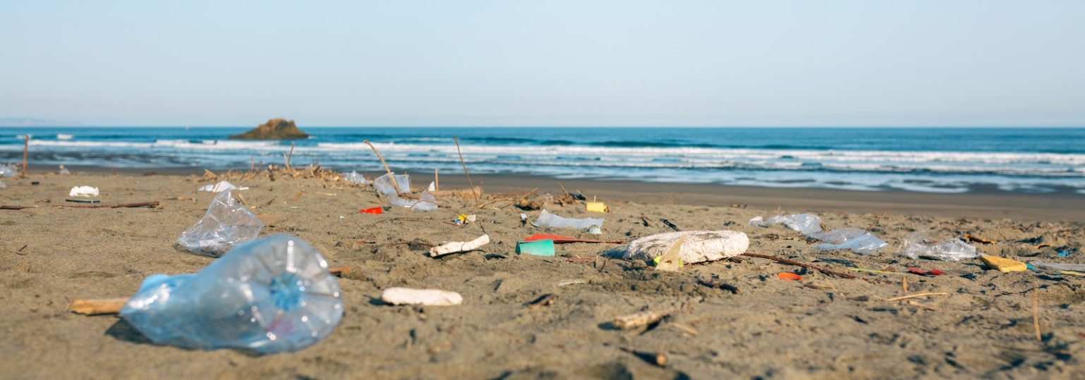 plastic pollution on beaches